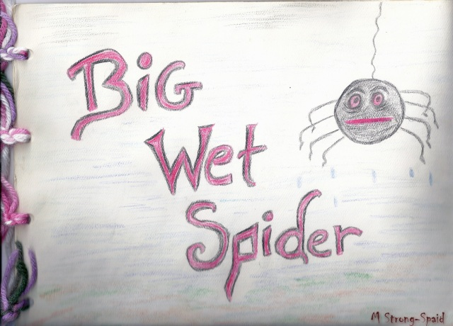 Big Wet Spider