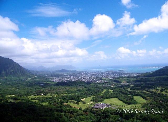 Hawaiian-view