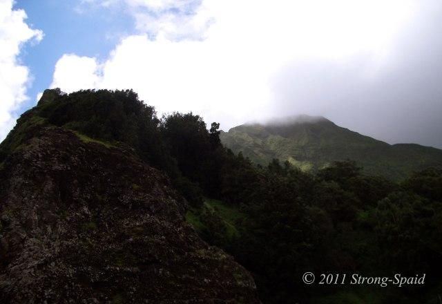 Pali-Ridge-Oahu