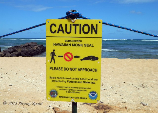 Caution-Endangered-Seal