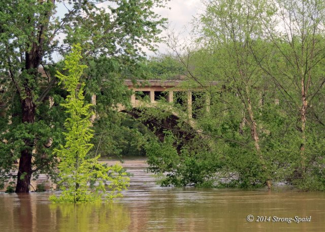 Rappahannock-River_13