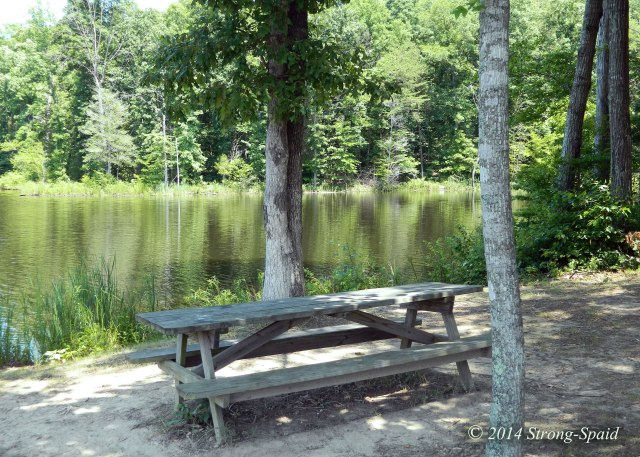 Lake-and-Table