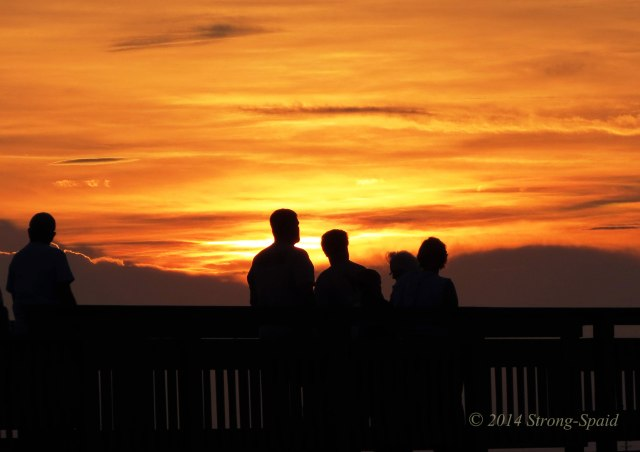 Sunset-Silhouettes
