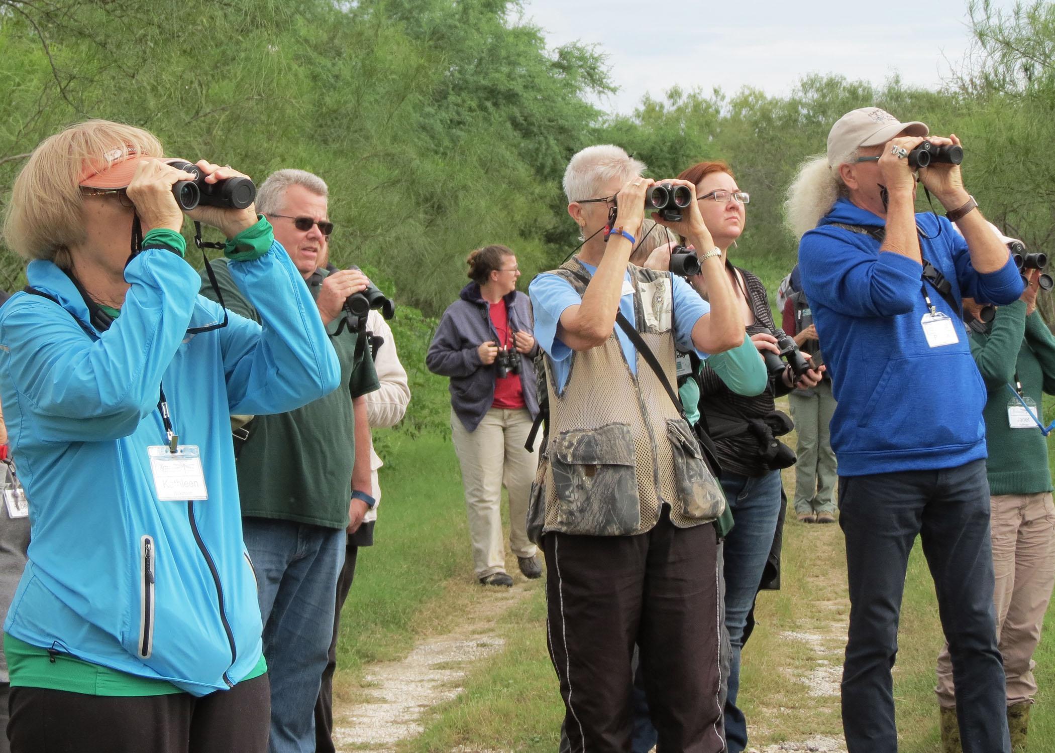 Mitchell Lake_birdwatching